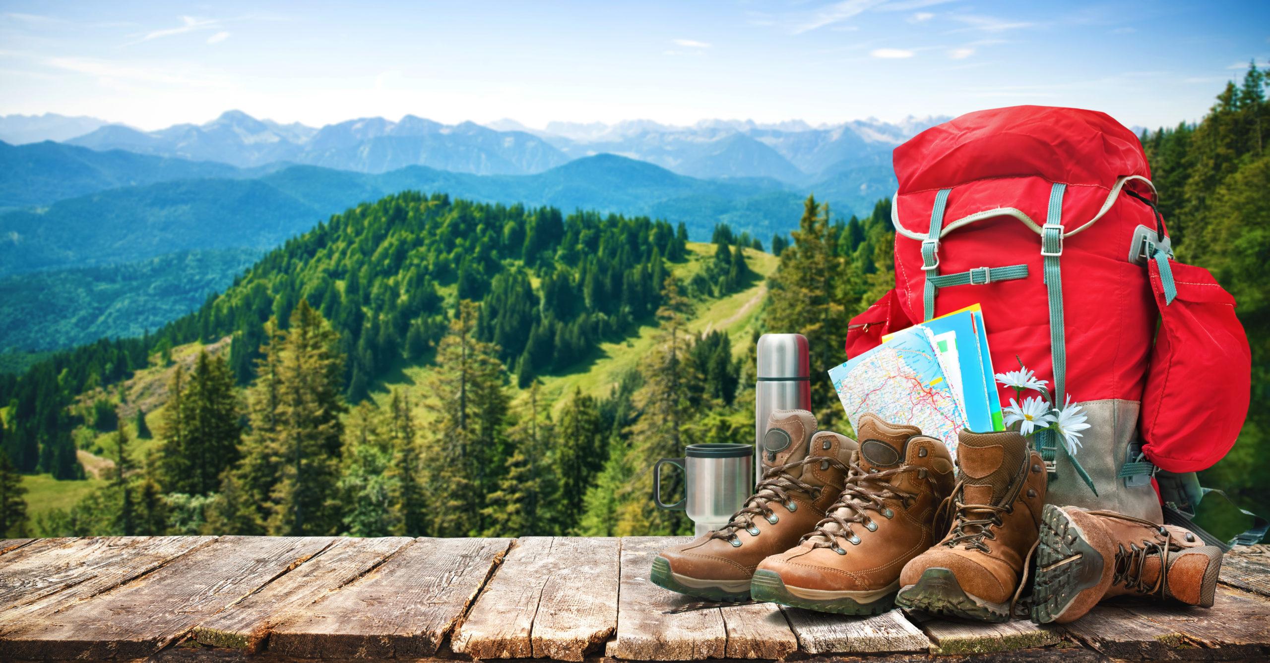 Des randonnées découvertes avec un accompagnateur en montagne
