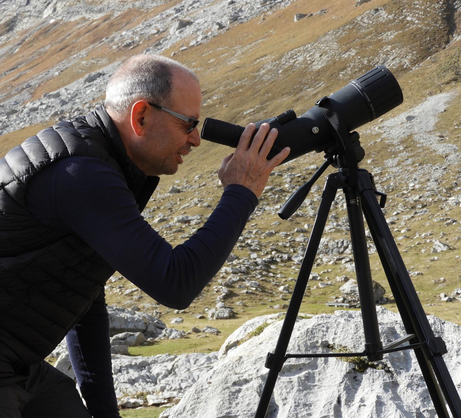 Observation ornithologique à Paray-Dorena